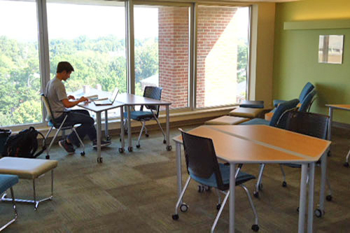 Students studing in front of a window in the 8th floor study room atDavis Library
