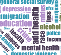tag cloud containing terms such as depression, education, crime, health, diabetes, mental health, and police