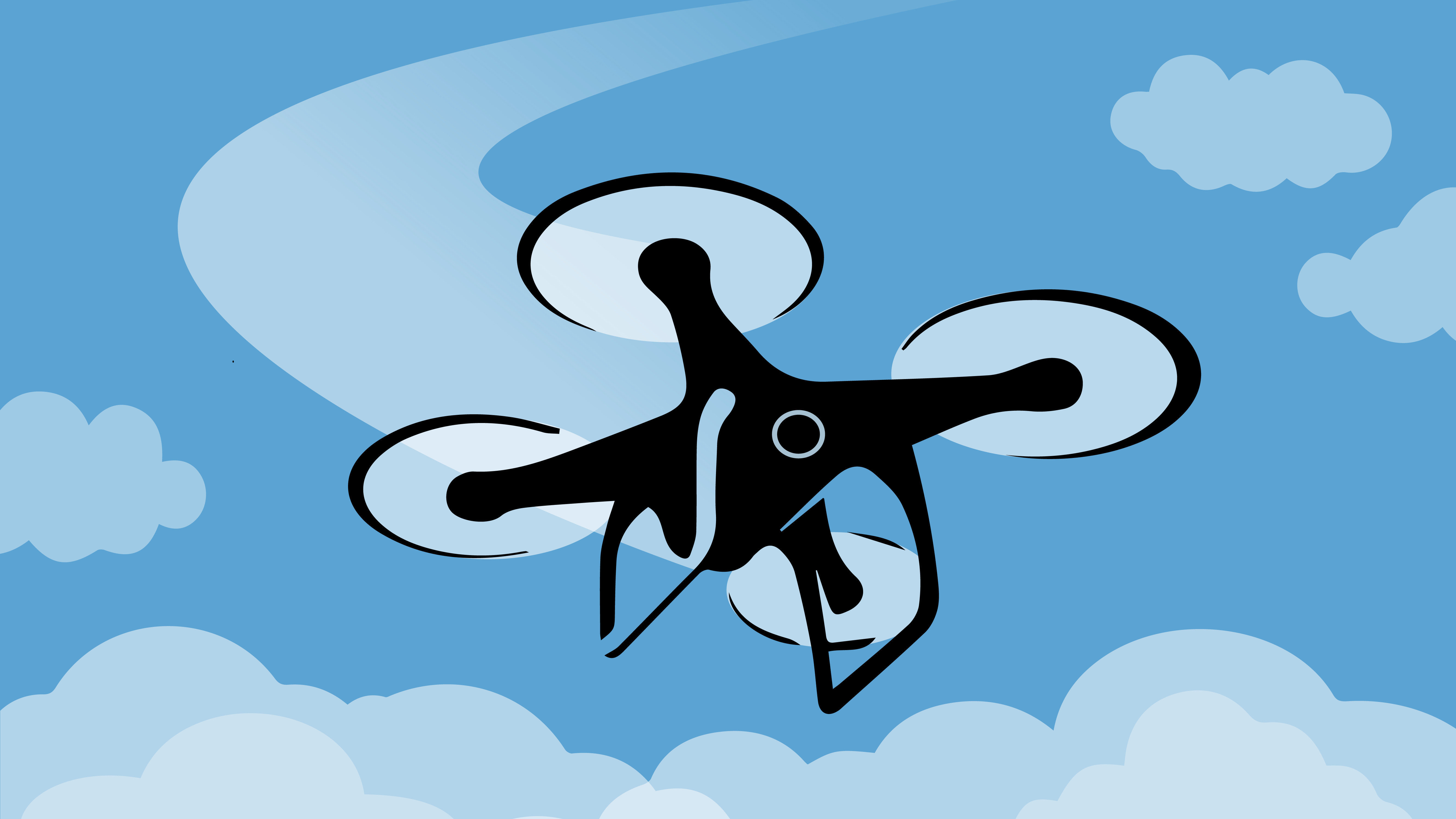 Program: The Ups and Downs of Using Drones for Research