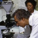 Robert Gallo MD looking in microscope